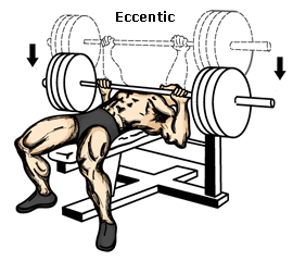 bench_press_eccentric